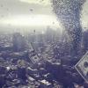 在金融市场中赚钱是因为在信息获取 信息处理上比别人强