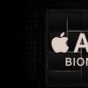 苹果称A13处理器的性能强大