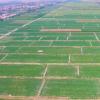 赤峰高标准农田建设工作以高效节水为重点