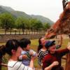 通过游客与小动物近距离互动等方式普及野生动物相关知识