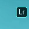 Lightroom的在线界面中将出现一个新的搜索栏允许您输入关键